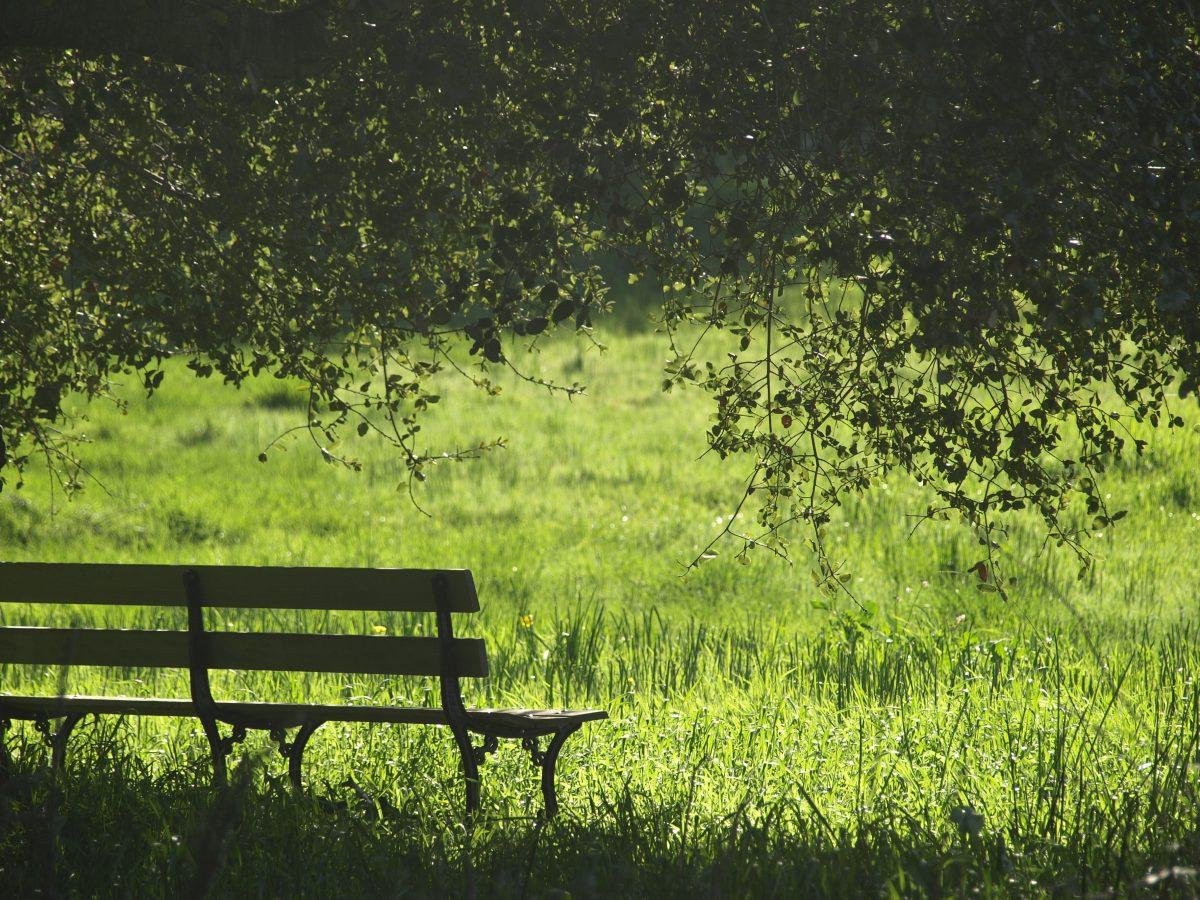 Lauschig - Lesungen in den Parks von Winterthur